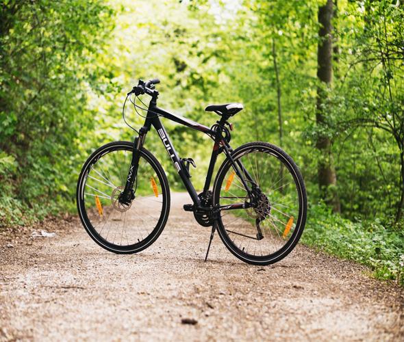 Bonalife - Alquiler bicicletas